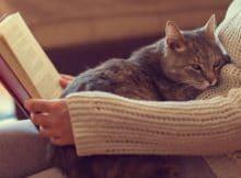 Los mejores libros sobre la autoestima