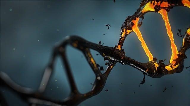 Explicación tras la prueba de ADN para la DIETA