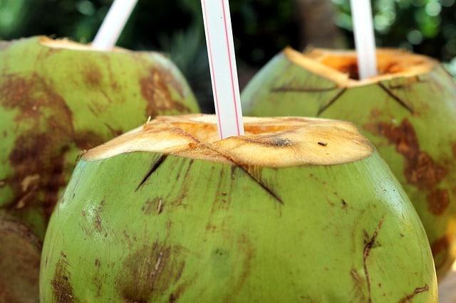 dónde comprar coco