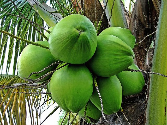 efectos secundarios del coco